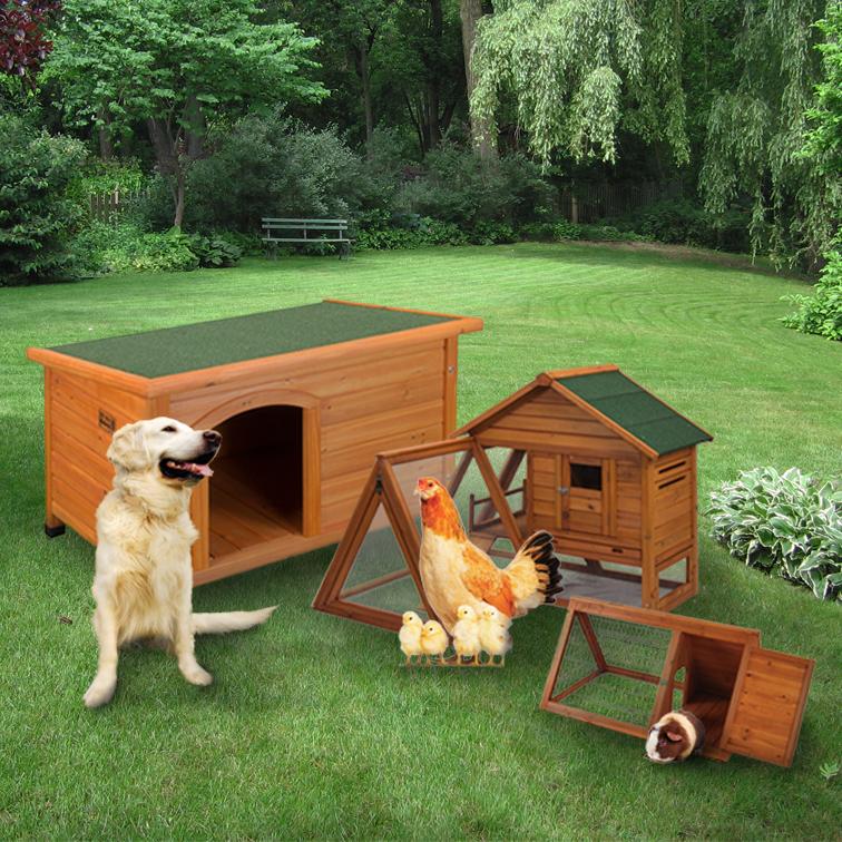 Pet Structures